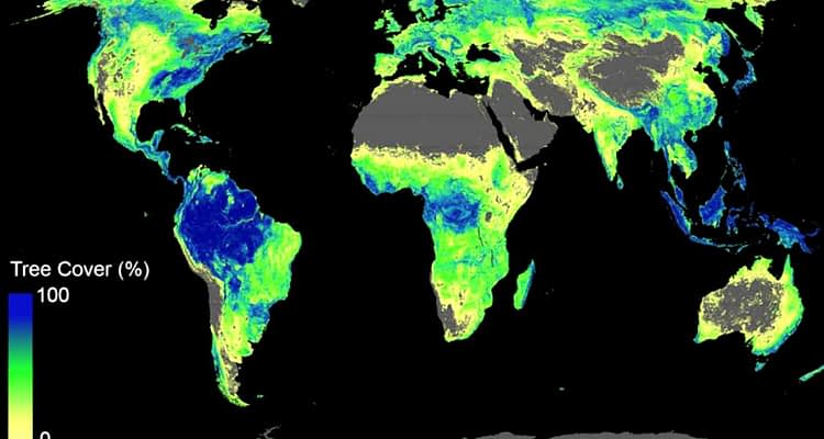 Tree Cover World Map ETH Zurich Website Released 1024x612 1