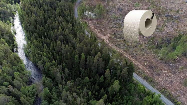 за тоалетна хартия