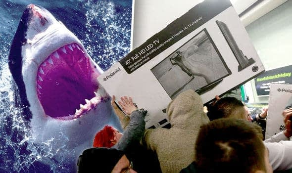 Black Friday Sales UK Shark Attack vs Black Friday Black Friday Sales Kill People US UK Sales Best Discounts Black Friday Death 618951