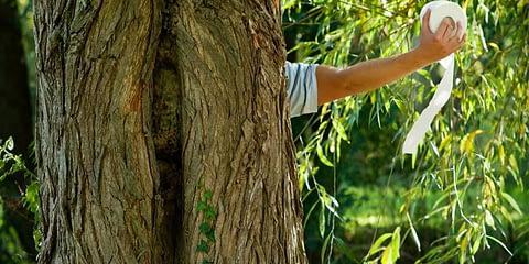 Спаси-дърво