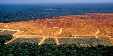на Амазония