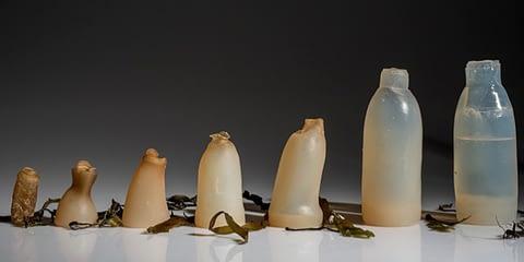 water bottles emgn 1