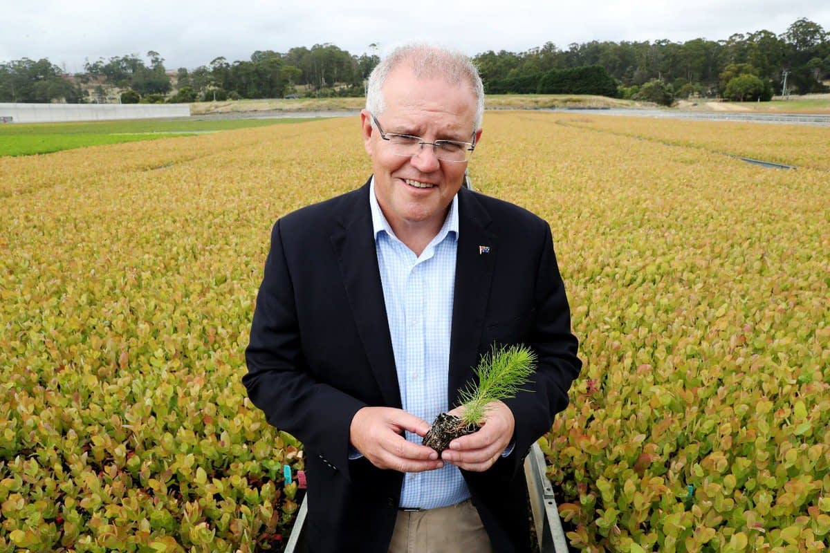 green7 Australia Scot Morrison
