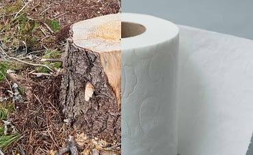 Не изхвърляйте горите в тоалетната