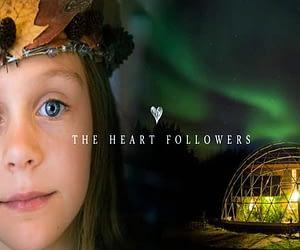 Heart followers 750x400 1